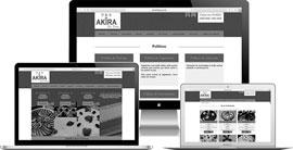Criação de site :: Akira Kit Festa