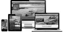 Criação de site :: Premier Jet