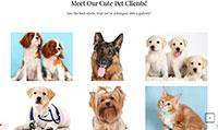 Site para pet shop :: Página Personalizadas