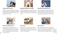 Site para pet shop :: Produtos