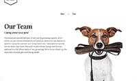 Site para pet shop :: Promoção